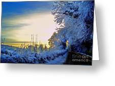 Winter Sunburst Greeting Card