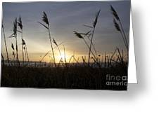 Winter Sunrise In Newport Ri Greeting Card