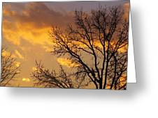 Winter Sunset In Pa Greeting Card