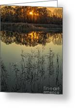 Winter Sunset Reflection Greeting Card