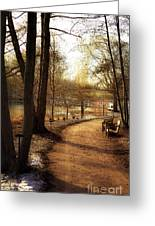 Winter Sunshine Greeting Card by Julie Palencia