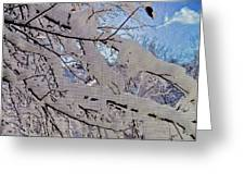 Winter Through Screen Greeting Card