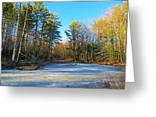 Winter To Spring Greeting Card