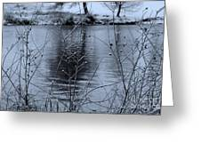 Winter Touch Greeting Card