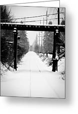 Winter Tracks Greeting Card