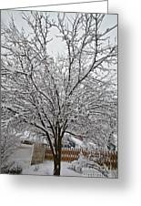 Winter Tree 7 Greeting Card