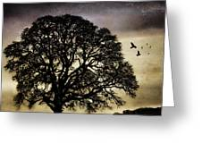 Winter Tree And Ravens Greeting Card