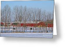Winter Tree Line Greeting Card