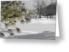 Winter Tree  Greeting Card by Paulina Szajek