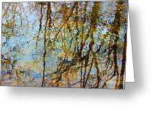 Winter Tree Reflections Greeting Card