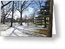 Winter Tree Shadows Greeting Card