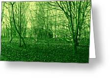 Winter Trees Green Greeting Card