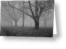 Winter Trees In The Mist Greeting Card by Georgia Fowler