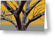 Winter Trees In Yellow Gray Mist 2 Greeting Card