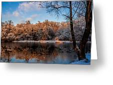 Winter Trees Lake Reflected Greeting Card