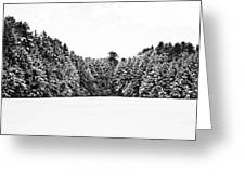 Winter Trees Mink Brook Hanover Nh Greeting Card by Edward Fielding