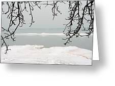Winter Under The Apple Tree Greeting Card