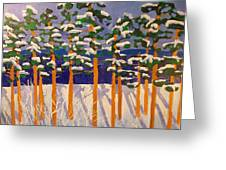 Winter Valley Greeting Card