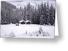 Forest Snow Blanketed Privies - Winter In Banff, Alberta Greeting Card