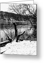 Winter Waterscape Greeting Card