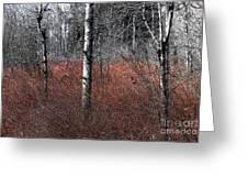 Winter Wetland I Greeting Card