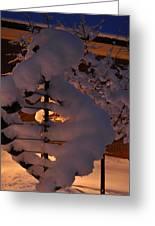 Winter Whirligig Greeting Card