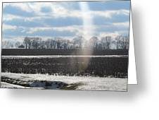 Winter White Rainbow Greeting Card