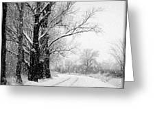Winter White Season's Greetings Greeting Card by Carol Groenen