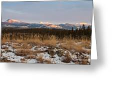 Winter Wilderness Landscape Yukon Territory Canada Greeting Card