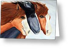 Horse Trio Greeting Card
