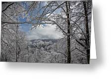 Winter Window Wonder Greeting Card