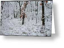 Winter Wonderland 2 Greeting Card