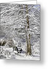 Winter Wonderland 9 Greeting Card