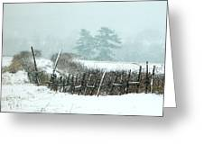 Winter Wonderland - Amazing Winter Landscape With Snow Falling Greeting Card