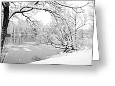 Winter Wonderland In Black And White Greeting Card