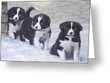 Winter Wonderland Greeting Card by John Silver