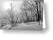 Winter Wonderland Monochrome Greeting Card
