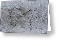 Winter Wonderland Series #01 Greeting Card