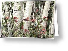 Winter Wood Jpg Greeting Card