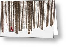 Winter Frolic Greeting Card