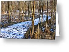 Winter Woods Walk Greeting Card