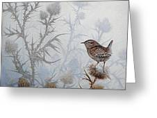 Winter Wren Greeting Card