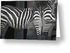 Winter Zebras Greeting Card