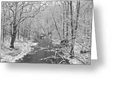 Winterlake Greeting Card by Nancy Edwards