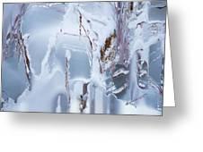 Winterland Greeting Card