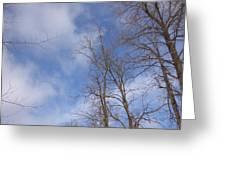 Winter's Blue Sky Greeting Card