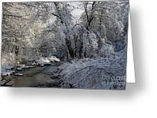 Winter's Canvas Greeting Card