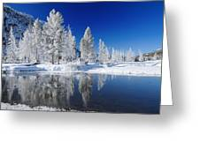 Winter's Chill Greeting Card