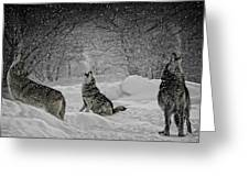 Winters Eve Howling Greeting Card