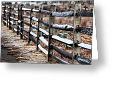Winter's Fence Greeting Card